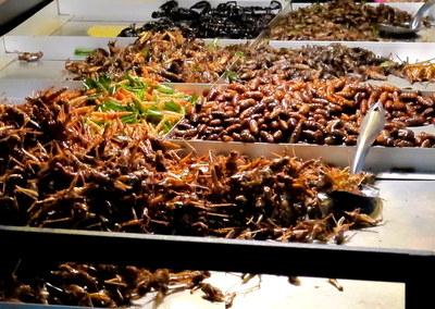 Insect cart Bangkok, Thailand