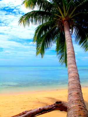 Beach on Derawan, Indonesia