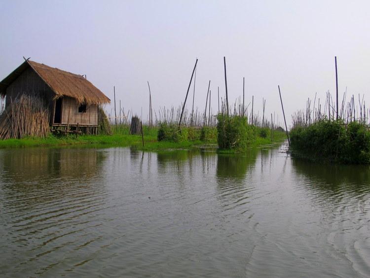 Floating Gardens Inle Lake, Myanmar